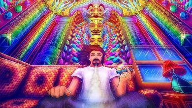 What is DMT